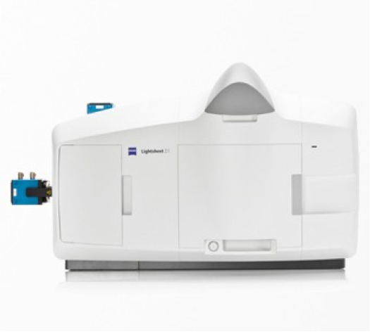 Zeiss Lightsheet  Short-Term Use