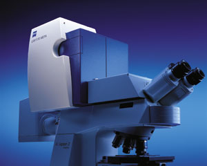 LSM 510 Upright Confocal