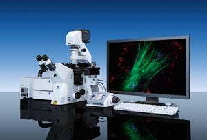 Zeiss Cell Observer Short-Term Use